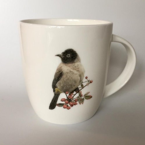 White spectacled Bulbul mug  ספל בולבול