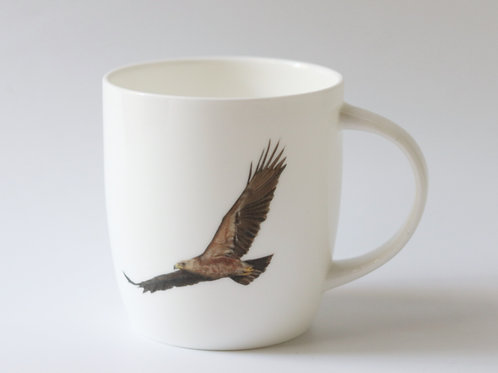 Lesser Spotted Eagle mug   ספל עיט חורש