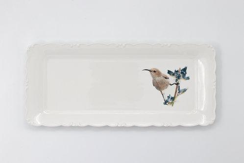 Palestine sunbird female, Platter  מגש צופית נקבה