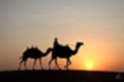 Camel-Desert-Safari-Sunset.jpg