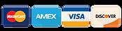 visa-credit-card-icon-24.png