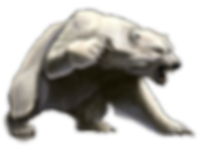 Polar Logo 300dpi Bear ONly.png