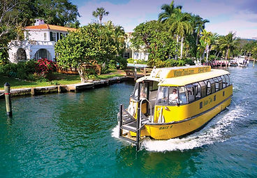 Closest to all Fort Lauerdale Attraction. Walk to th Water Taxi, Rent a Cataman, Go Sailing, Fine Dining and visit the Performing Arts