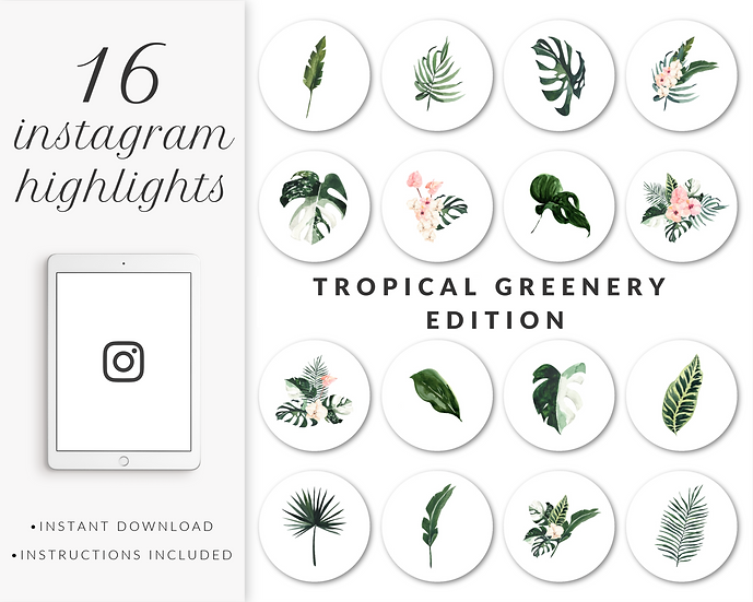 Instagram Highlights: Tropical Greenery Edition