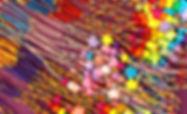 61895DCA-7EC7-4B99-A5DA-CAD5D0610A12_edi