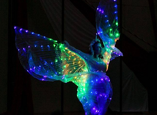 performer with led light wings in dark  Wellington New Zealand