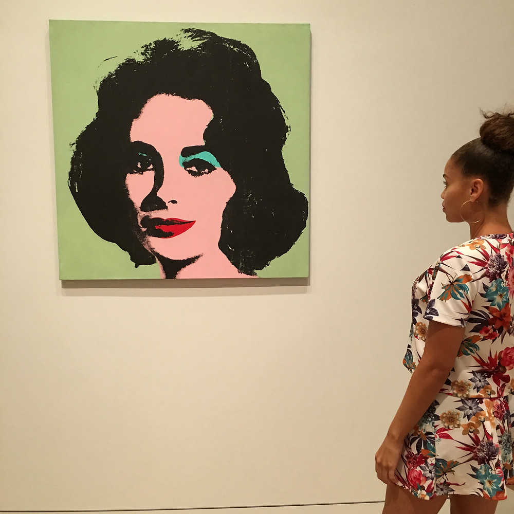 Art Institute of Chicago - Andy Warhol Piece