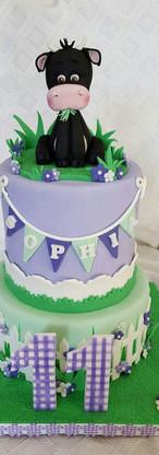 Sophia's 13th Birthday Fun Cake