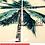 Thumbnail: Linha Tropika - Palm