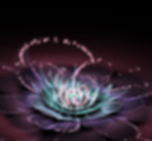 shining lotus resized.jpg