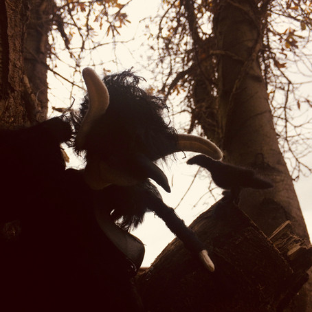 Two Ravens find a Spodling
