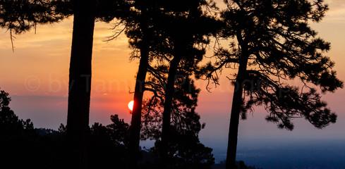 Sunrise over Boulder (2647)