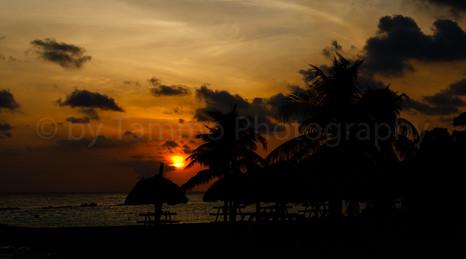 Curacao sundown (2460)
