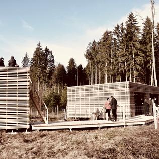 eichenwald base audi