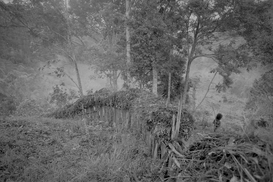 West Papua-12.jpg