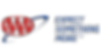 web-logo AAA.png