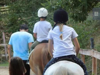 Estate a cavallo nella natura