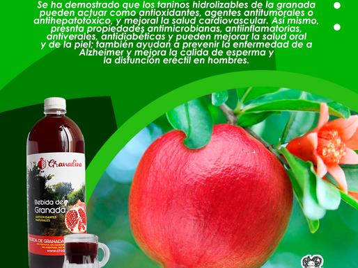 Potencia antioxidante del jugo y extracto de granada consumiendo lípidos oxidados como hamburguesa
