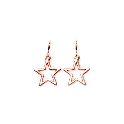 Envy Rose Gold Earings