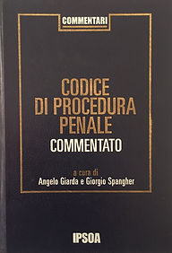 codice pp.jpg