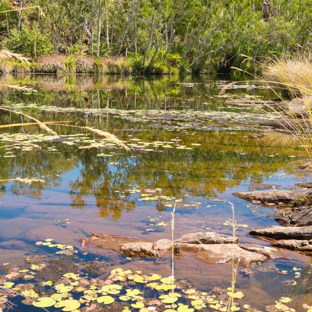 Camp Creek (9).jpg