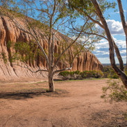 Desert_056.jpg