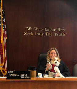 Therapy dog at the courthouse provides stress relief for litigants