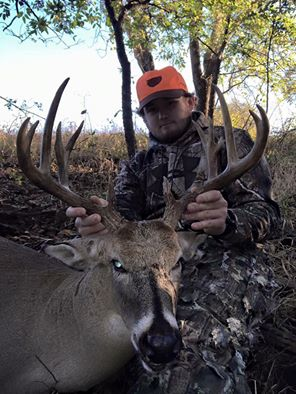 Waurika Deer II