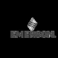 emerson-logo-no-color.png