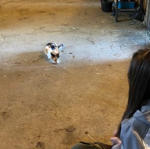 Zoie beginning to trust Katie