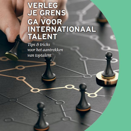Guideline for companies: attracting and retaining top international talent