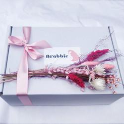 Brabbie Box Premium