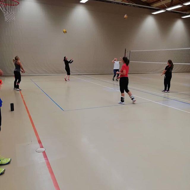Freitag ist #Volleyball in #Althütte 😁?