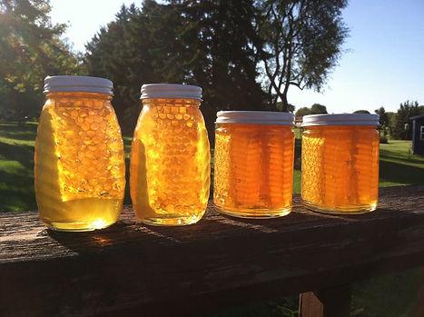 Chunk honey. Dunham Bees. London, Ohio.