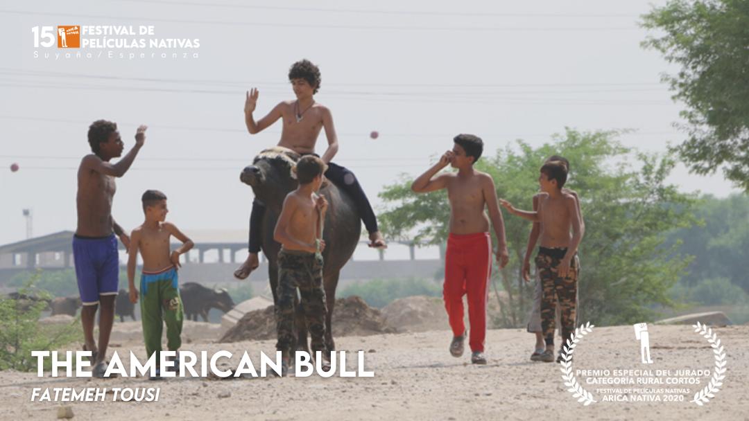 The american bull