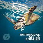 DIGAØ - Tartarugas Até Lá Embaixo