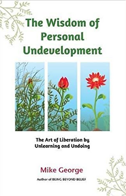 book - Wisdome of Personal Undevelopment