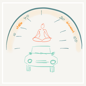 yogi on a car