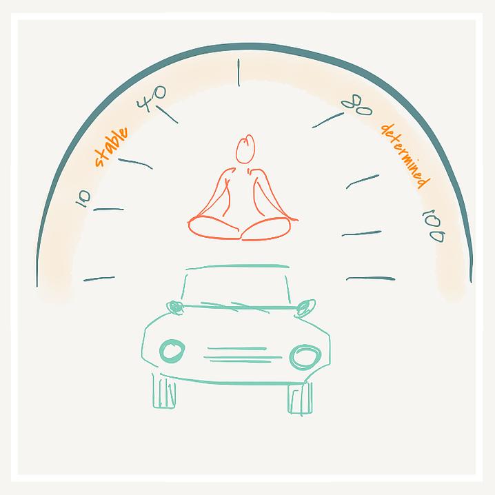yogi on car