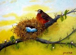Robin's Watchful Eye