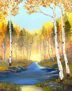 Fall Scene with Birch Trees