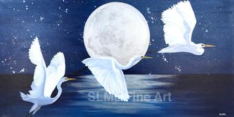 Moonlight Flight