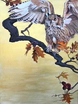 Owl In Oak