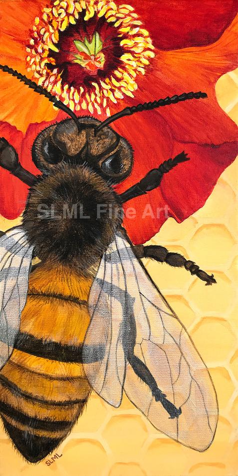 Beesy, Beesy, Beesy