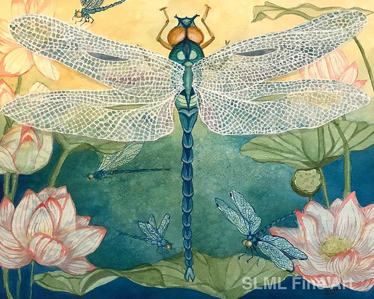 DragonflyWM.jpg