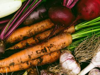 Bio Gemüse aus dem Gefängnis