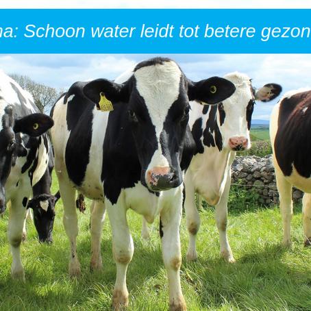 Fam. Oenema: Schoon water leidt tot betere gezondheid koeien