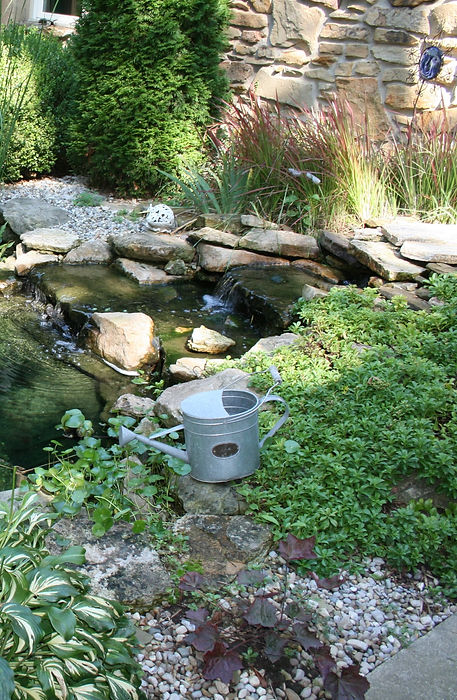Small%20Pond%20with%20Small%20Water%20Fa