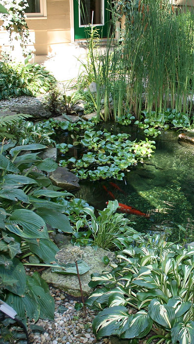 Copy%20of%20Small%20Pond%20with%20Small%