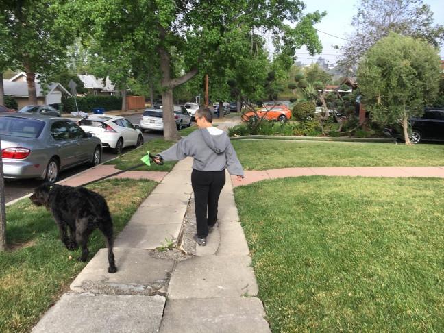 uneven sidewalk trip hazard